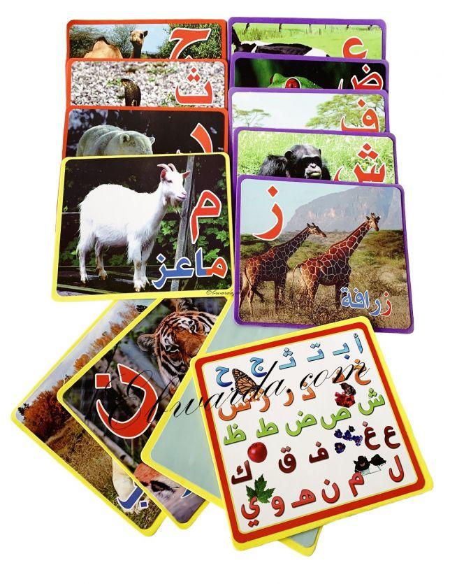 Pack de 15 carte pour apprendre les lettres l'alphabet arab