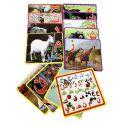 Pack de 15 carte pour apprendre les lettres l'alphabet arab حروف الهجاء العربية