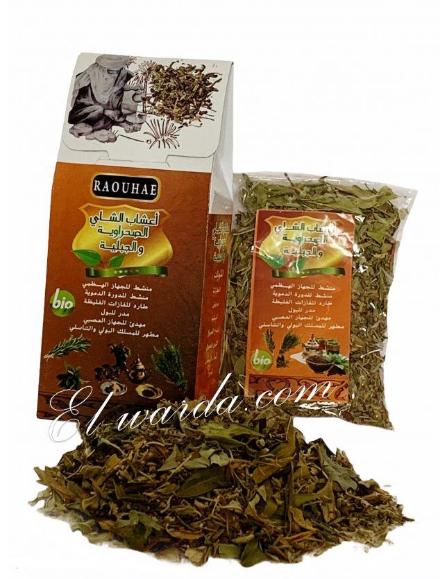 Thé Marocain أعشاب الشاي الصحراوية والجبلية